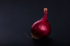 Fresh raw aromatic red onion Royalty Free Stock Images