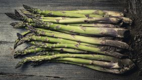 Fresh raw asparagus from above on wooden table. From above shot of fresh green asparagus on wooden table with heap of soil Stock Images