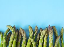 Fresh  raw asparagus on light blue background. Fresh  raw asparagus on light blue background, copy space Stock Images