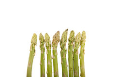 Fresh raw asparagus. On white background Stock Images