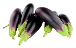 Fresh Raw Baby Aubergines. Isolated on a white background Royalty Free Stock Photography