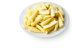 Fresh raw baby corn in white plate. Isolated on white Royalty Free Stock Image