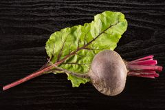 Fresh raw Beetroot isolated on black wood. Red beet young bulb and one green leaf flatlay isolated on black wood background top view Stock Photography