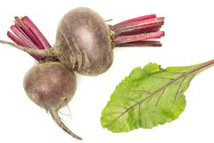 Fresh raw Beetroot isolated isolated on white. Two red beet young bulbs with one green leaf flatlay isolated on white background top view Royalty Free Stock Photos