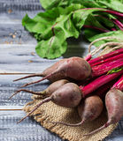 Fresh raw beetroot on wooden background. Selective focus Royalty Free Stock Photo