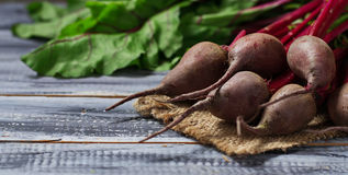 Fresh raw beetroot on wooden background. Selective focus Stock Image