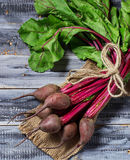 Fresh raw beetroot on wooden background. Selective focus Royalty Free Stock Photos