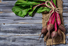 Fresh raw beetroot on wooden background. Selective focus. Space for text Royalty Free Stock Photo