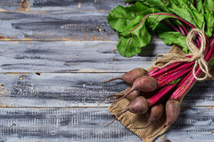 Fresh raw beetroot on wooden background. Selective focus. Space for text Stock Photos