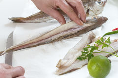 Fresh raw being filleting for recipe on white background. Fresh raw prparzd for cooking on white background Stock Photo