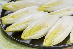 Fresh raw Belgian bitter chicory salad ready to cook. Close up Stock Images