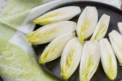Fresh raw Belgian bitter chicory salad ready to cook. Close up Royalty Free Stock Photography
