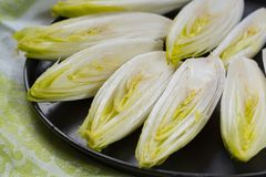 Fresh raw Belgian bitter chicory salad ready to cook. Close up Stock Photography