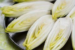 Fresh raw Belgian bitter chicory salad ready to cook. Close up Stock Photo