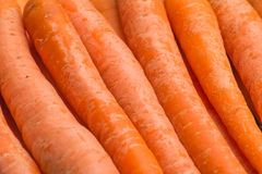 Fresh, raw, bio carrots. Fresh, raw, organic, bio, orange carrots. Healthy vegan vegetarian vegetable food Stock Images