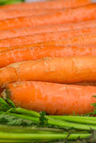 Fresh, raw, bio carrots. Fresh, raw, organic, bio, orange carrots. Healthy vegan vegetarian vegetable food Stock Photo