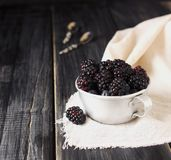 Fresh raw blackberries in metal cup, selective focus. Fresh raw ripe blackberries in a metal cup on black wooden table, selective focus, space for text Stock Images