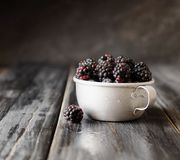 Fresh raw blackberries in metal cup, selective focus. Fresh raw ripe blackberries in a metal cup on black wooden table, selective focus, space for text Royalty Free Stock Photo