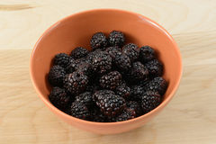Fresh raw blackberries. In orange bowl in table Royalty Free Stock Image