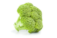 Fresh raw broccoli. Broccoli floret on a white background. Clipping path Royalty Free Stock Photo