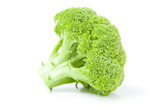 Fresh raw broccoli isolated on a white background cutout. Broccoli cabbage isolated on a white background cutout Stock Photos