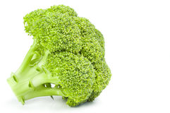 Fresh raw broccoli isolated on a white background cutout. Fresh head of broccoli on a white background. Clipping path Royalty Free Stock Photo