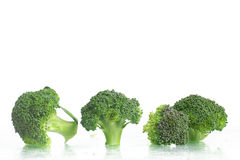 Fresh Raw Broccoli. Over a wet glass surface Royalty Free Stock Photography