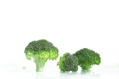 Fresh Raw Broccoli. Over a wet glass surface Royalty Free Stock Photo