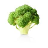 Fresh raw broccoli on white. Background Stock Photos