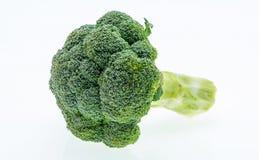 Fresh raw broccoli on white background. Royalty Free Stock Images