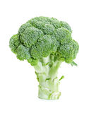Fresh raw broccoli. On a white background Royalty Free Stock Image