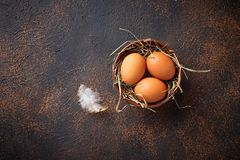 Fresh raw brown eggs in bowl. Top view Royalty Free Stock Photo