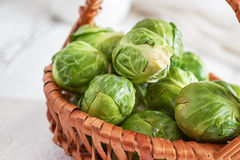 Fresh raw brussel sprouts Royalty Free Stock Photos