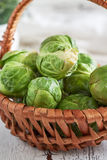 Fresh raw brussel sprouts Royalty Free Stock Images