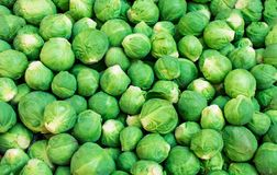 Fresh raw Brussels sprouts Background, close up.  Stock Photos