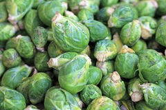 Fresh raw brussels sprouts at farmers market, Chile. South America Stock Images