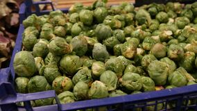 Fresh raw brussels sprouts and green salad on the market