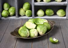 Fresh raw brussels sprouts in metal plate on  wooden background Royalty Free Stock Images