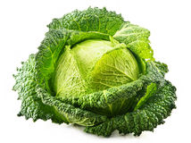 Fresh raw cabbage on white. Background Royalty Free Stock Image