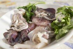 Fresh raw calamari. On a white dish Royalty Free Stock Image