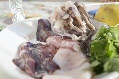 Fresh raw calamari. On a white dish Royalty Free Stock Photography