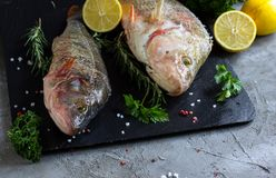 Fresh raw carp fish. Ice cubes, lemon and lime slices, spices and herbs on a black stone boards on black marble background. top view, copy space Royalty Free Stock Image