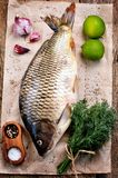 Fresh raw carp fish with lime, dill and garlic on old wooden background. Food Royalty Free Stock Image