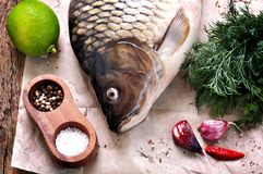Fresh raw carp fish with lime, dill and garlic on old wooden background. Food Stock Images