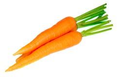 Fresh raw carrot Stock Image