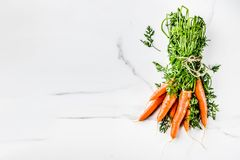 Fresh raw carrots. With green leaves, white marble background copy space top view Stock Images