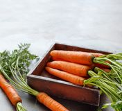 Fresh raw carrots with leaves in a box. Fresh raw carrots with leaves on a wooden table Royalty Free Stock Photo