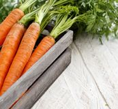 Fresh raw carrots with leaves. In a box on a wooden table Stock Photo