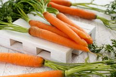 Fresh raw carrots with leaves. On a white wooden table Stock Image