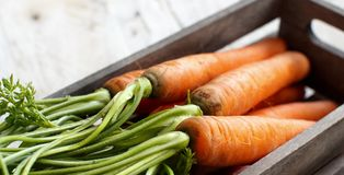 Fresh raw carrots with leaves in a box. Fresh raw carrots with leaves on a wooden table Stock Images